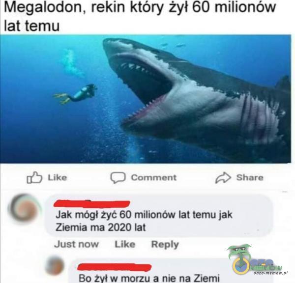 Megalodon. rekin który żył G0 milionów lat temu TE lica (J tammint ES Stara i = w Jak mógł żyć 60 milionów lat ternu jak Ziemia ma 2020 lat Jusinow like Rey 5 mz Bo żył w morztt a nie na Ziemi