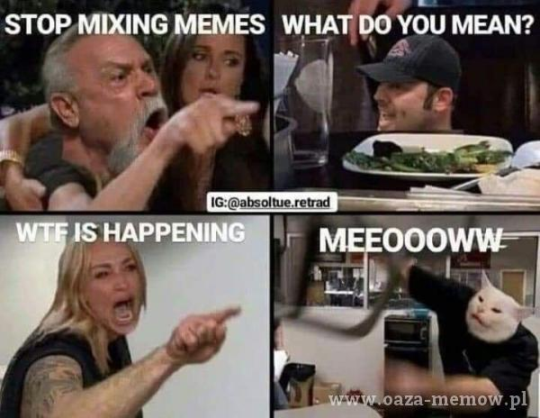 STOP MIXING MEMES WHAȚPO YOU MEAN? 000