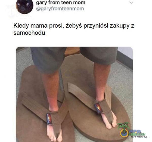 gary Erzryfmmtegnrim Kiedy mama prosi. żebyś przyniósł zakupy z samochodu