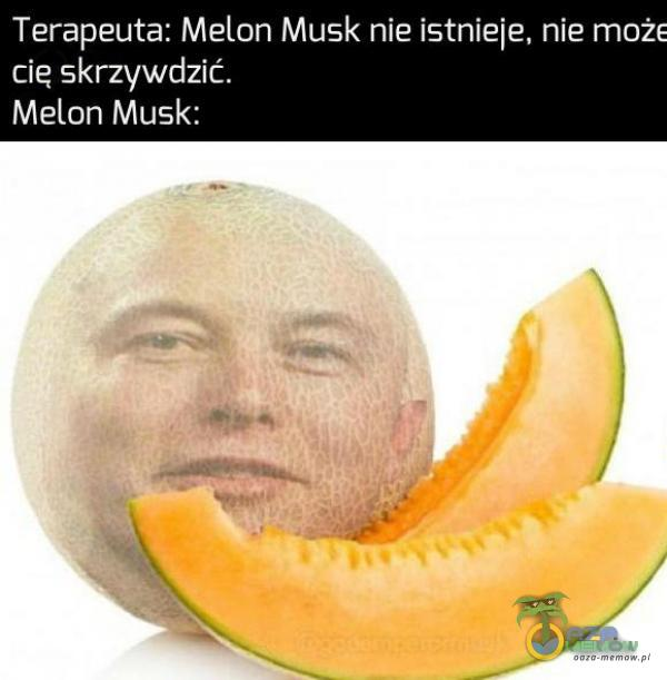 Terapeuta: Melon Musk nieistnieje, nie może cię skrzywdzić. Melon Musk: