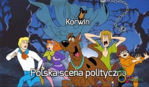 Korwin Polsôscena polityczna