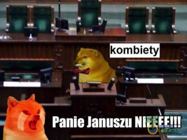 SĄ TL kombiety na M Ż — 1 mm 8 Panie Januszu NIEEEEH