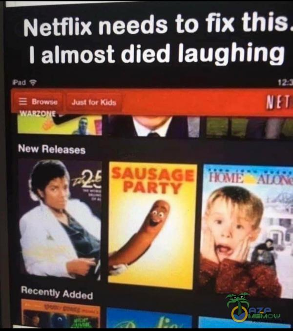 Netflix needs to fix this. I almost died laughing pz Taj a Z |