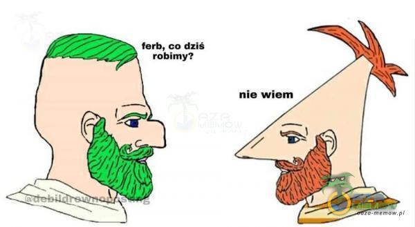ferb, co dziś robimy?