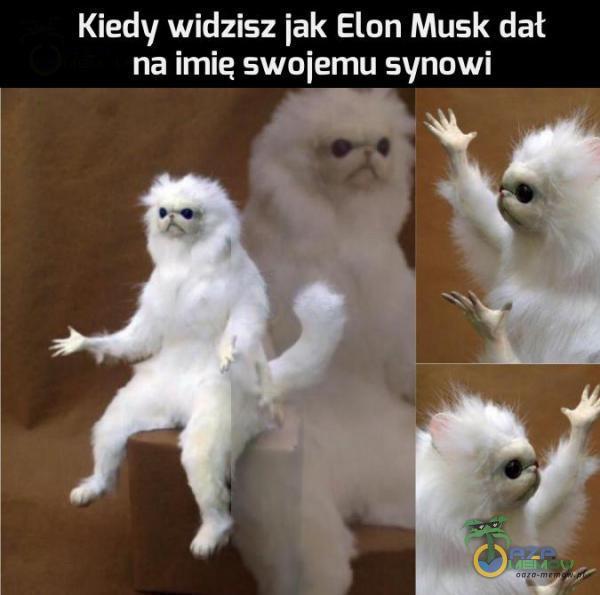 Kiedy widzisz jak Elon Musk dał OCD UND