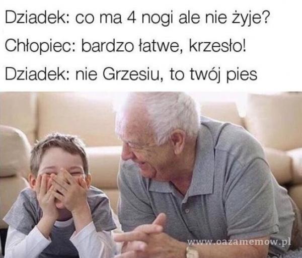 Dziadek: co ma 4 nogi ale nie żyje? Chłopiec: bardzo łatwe, krzesło! Dziadek: nie Grzesiu, to twój pies
