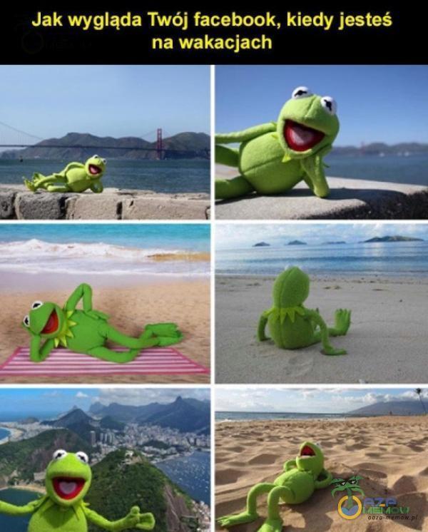 Jak wygląda Twój facebook, kiedy jesteś na wakacjach