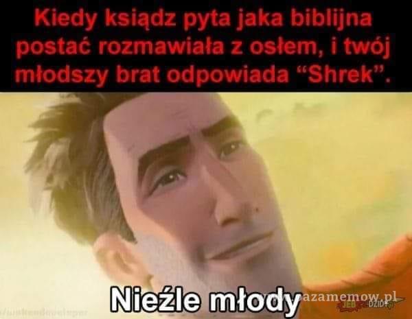 Kiedy ksiądz pyta jaka biblijna postać rozmawiała z osłem, i twój młodszy brat odpowiada Shrek . Nieźle młody ow,pL