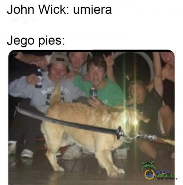 John Wick: umiera Jego pies: sy s