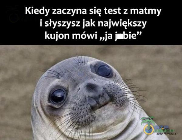 """Kiedy zaczyna się test z matmy i słyszysz jak największy kujon mówi """"ja j•bie"""""""