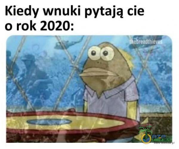 Kiedy wnuki pytają cie o rok 2020: