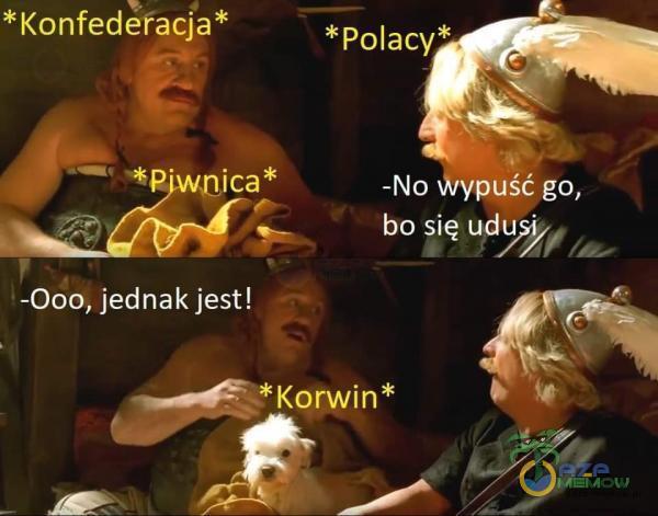 *Konfederacja* ica* -000, jednak jest! *Polacy* -No Wypuść go, bo się udu