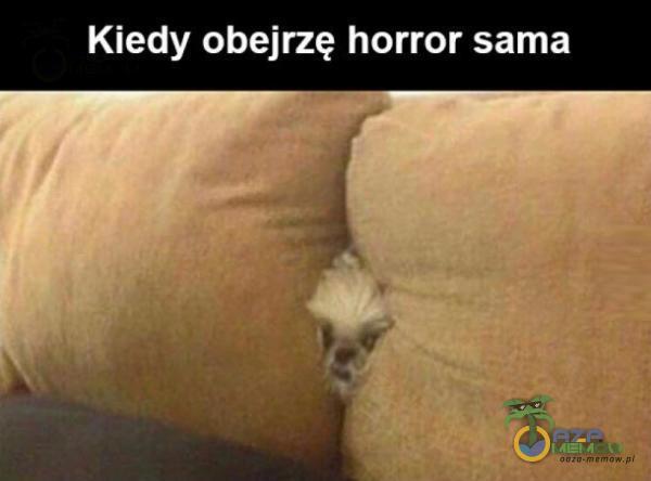 Kiedy obejrzę horror sama