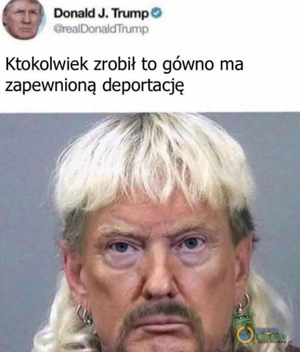 Ktokolwiek zrobił to gówno ma zapewnioną deportację
