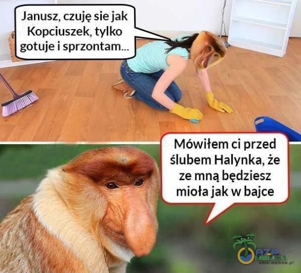Janusz, czuję sie jak Kopciuszek, tylka gotuje i Mówiłem ci przed ślubem Halynka, że ze mną będziesz mioła jak w bajce