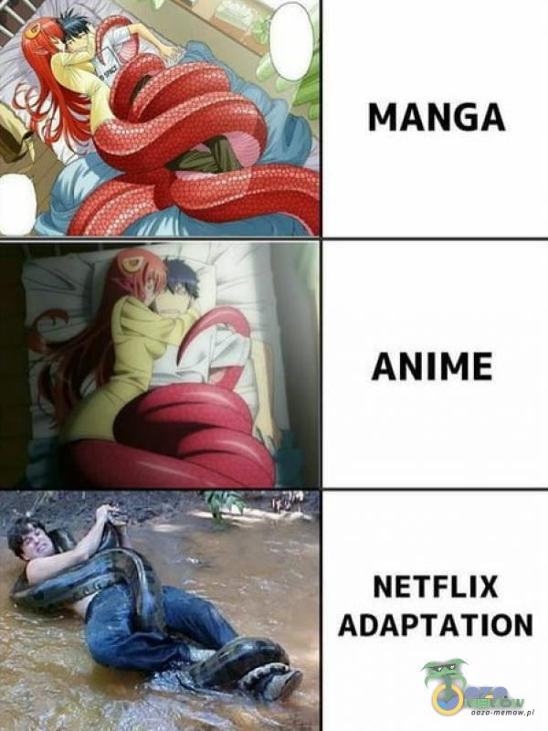 . NETFLIX ADAPTATION