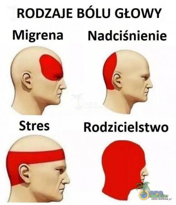 RODZAJE BÓLU GŁOWY Migrena MNadciśnienie s© G: Stres Rodzicielstwo Oę . .—-?-