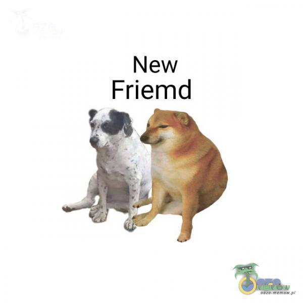 — New Friemd