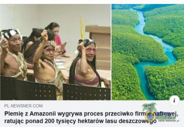 Flemłę : Amaznnll wygrywa proces pfzeclwko mle umowe]. ralując pan-Id 200 tysięcy hektarów lasu deszczowego
