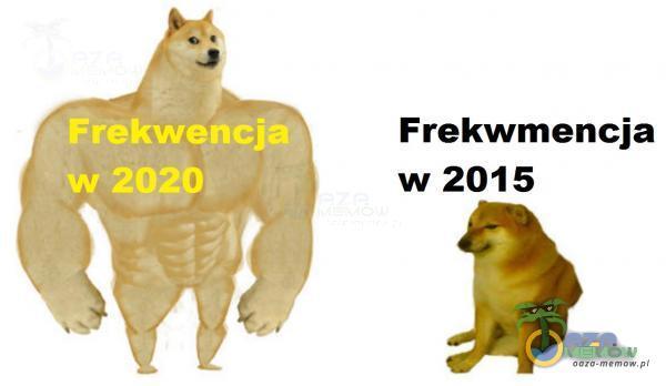Frekwmencja w 2015