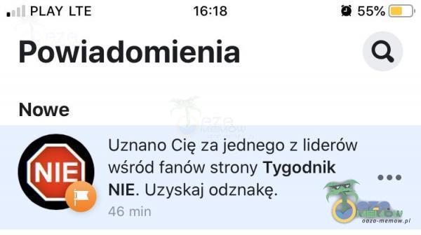 PLAY LTE 16:18 55% Powiadomienia Nowe Uznano Cię za jednego z liderów wśród fanów strony Tygodnik NIE. Uzyskaj odznakę. 46 min