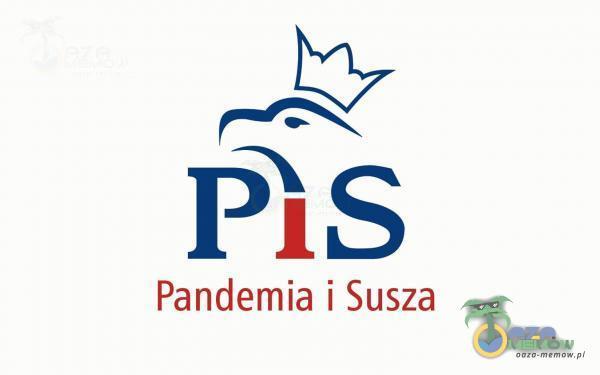 M PiS Pandemia i Susza