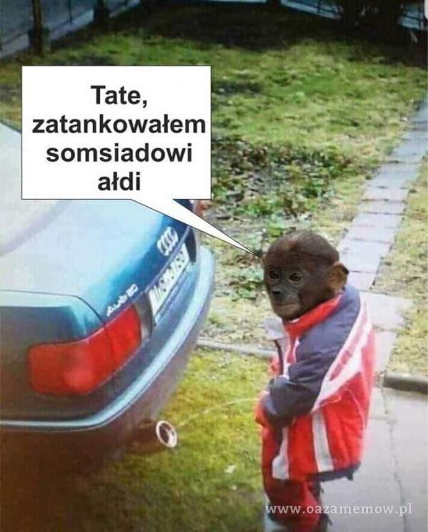 Tate, zatankowałem somsiadowi ałdi