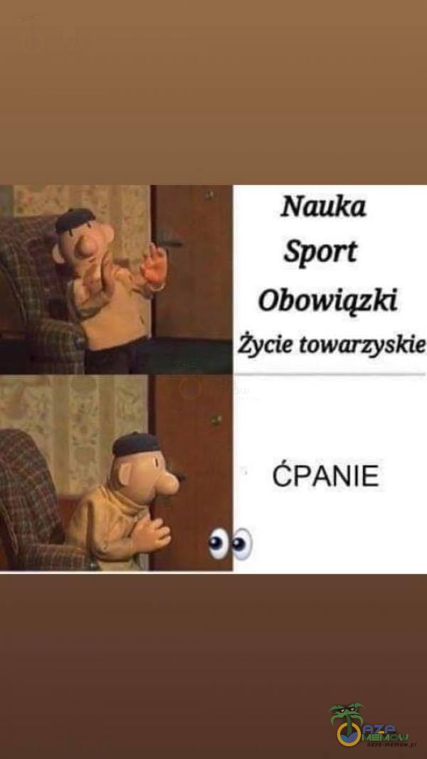 Nauka Sport Obowiązki życie towarzyskie CF)ANIE