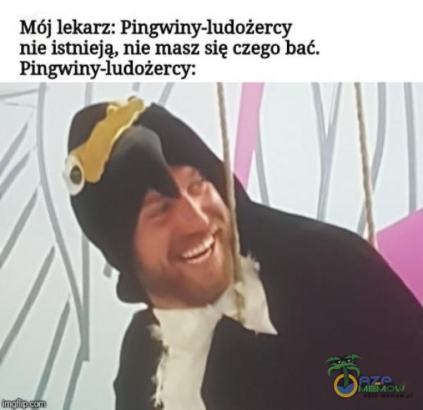 Mój lekarz: Pingwiny-ludożercy nie istnieją, nie masz się czego bać. Pingwiny-ludożercy: