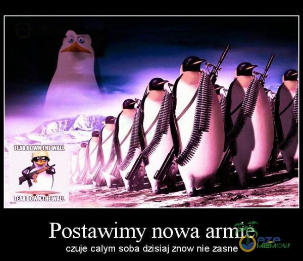 Postawimy nowa armie CZUJE calym soba daslaj znow nie zasne