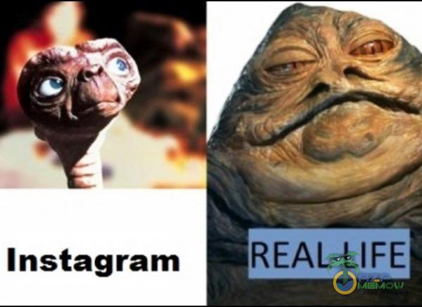 Instagram * EAL LIFE