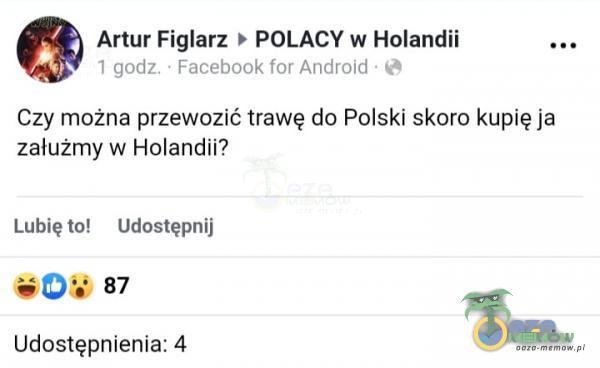 % Artur Fięfarz > POLACY w Hotendii m Czy można; przewozić trawę do Polski skoro kupię ja zalużmy w Holandii? Lubię tól udoatyprij Du 8 Udostępnienta: 2