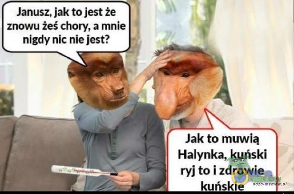 Janusz, jak to Jest że znowu żeśchory, a mnie nigdy nic nie Jest? Jak to muwią Halynka, kuński ryjtoi zdrowie