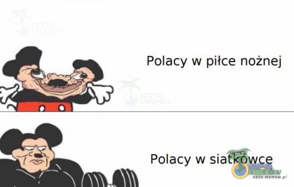 Polacy w piłce nożnej Polacy w siatkówce
