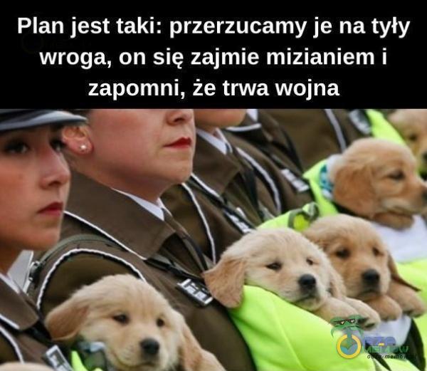 Plan jest taki: przerzucamy je na tyły wroga, on się zajmie mizianiem i zapomni. że trwa wojna