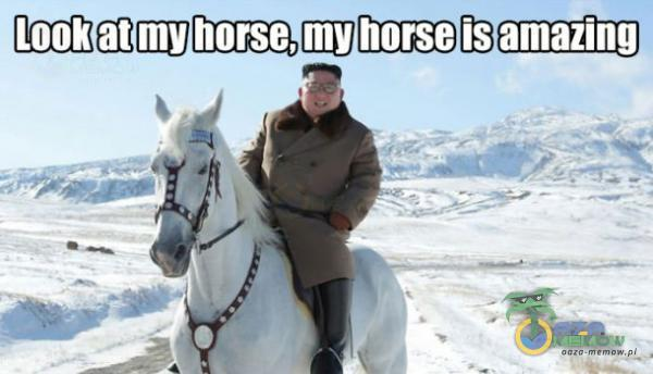 Look at my horse, my norse is amazing