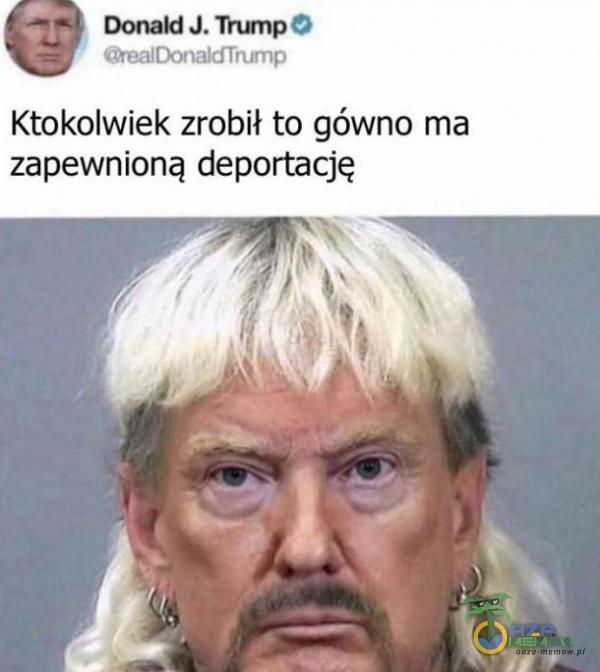 """"""" Bonald J, Trump eż Biraireied hr Ktokolwiek zrobił to gówno ma zapewnioną deportację"""
