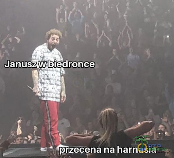 Janusz w•biedroncec E na harnasia