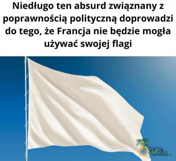 Niedługo ten absurd związnany ż poprawnością polityczną doprowadzi do tego, że Francja nie będzie mogła używać swojej flagi