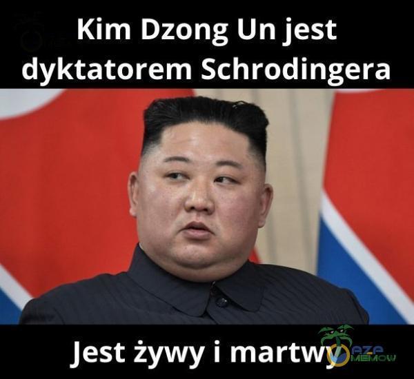 (UN zAL AUC dyktatorem Schrodingera w b — Jest żywy i martwy