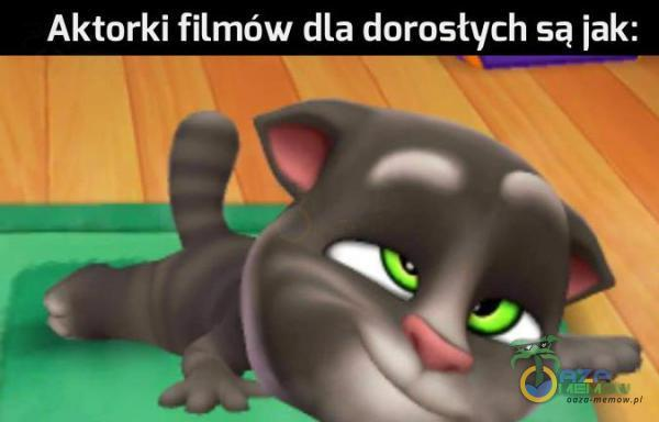 Aktorki filmów dla dorosłych są iak: