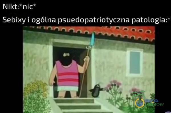 Nikt nic* Sebixy i agólna psuedopatriotyczna patologia:*