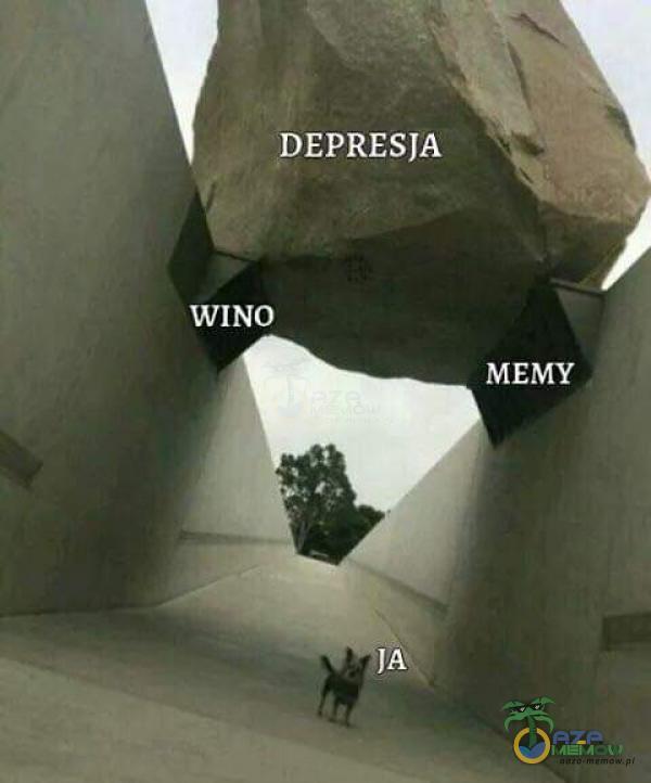 WINO DEPRESJA 4 LJ MEMY Ę