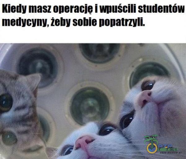 Kiedy masz operację i wnuścili studentów metiycyny. żeby sobie ponatrzyli.