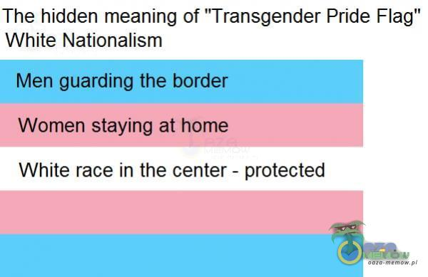 """The hidden meaning of Transgender Pride Flag"""" White Nationalism Men guarding the border Women staying at home White race in the center - protected"""