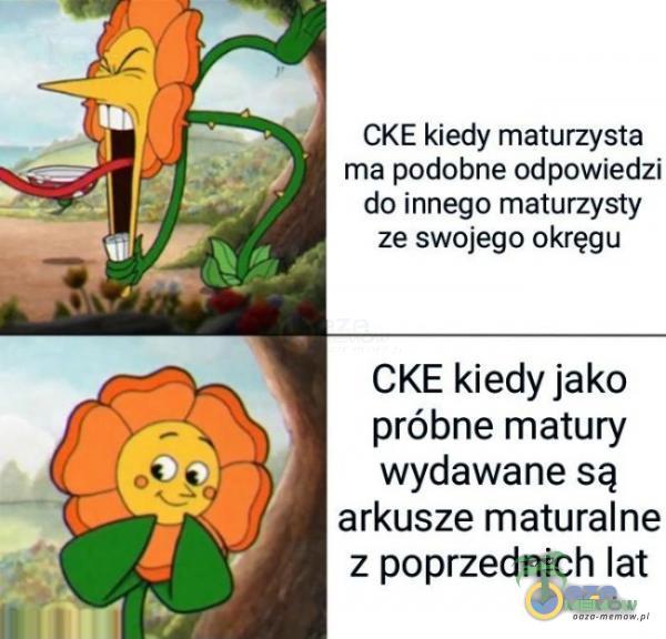 CKE kiedy msiurzysta ma podobne odpowiedzi do innego maturzysty ze swojego okręgu CKE kiedy jako próbne matury wydawane są arkusze maturalne z poprzednich lat