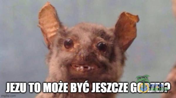 UZO AA IB BATTLE