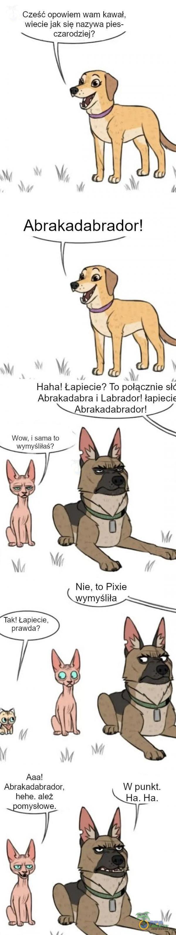 """Cześć opowiem wam kawał. Wiecie """"iaksię naźywa pies: ~ + EL» Haha! Łapiście? To- pbłąqznie s)? """"Abrakadabra i Labrador! """"Pabieda «Abrakadabradon< Waw. › sama to wvmyśmas? TakLLapięcię. prawda? & Aaa! Abrakadabrador. hehe. ależ umysłowe."""