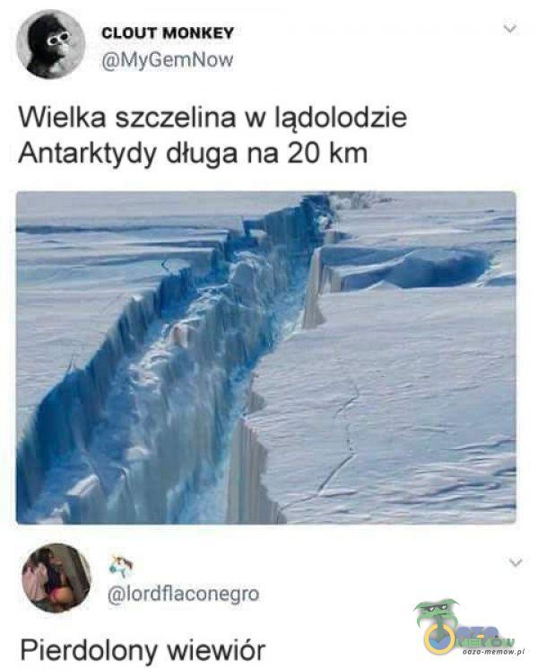 CLOUT MONKEY MyGemNow Wielka szczelina w lądolodzie Antarktydy długa na 20 km lordflaco***ro Pierdolony wiewiór