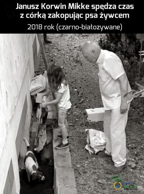 Janu52 Korwin Mikke spędza czas : córką zakopuiąc psa żywcem 2019 rok (czarno-białozywane) ! - _. qą— ›